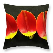Three Tulip Petals Throw Pillow