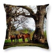 Three Under A Tree Throw Pillow