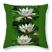 Three Water Lilies Throw Pillow