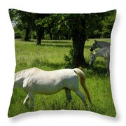 Three White Lipizzan Horses Grazing In A Field At The Lipica Stu Throw Pillow