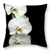 Three White Orchids Throw Pillow