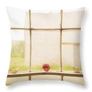 Three Window Shells Throw Pillow