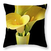 Three Yellow Calla Lilies Throw Pillow by Garry Gay