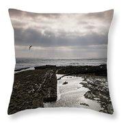 Throne Of Seagulls Throw Pillow