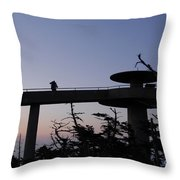 Through Hiker Throw Pillow