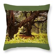 Through The Ages Throw Pillow