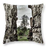 Through The Castle Window Throw Pillow