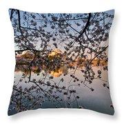 Through The Cherry Tree Throw Pillow