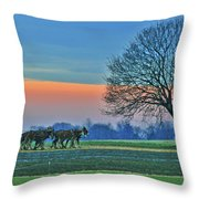 Through The Fields Throw Pillow by Scott Mahon