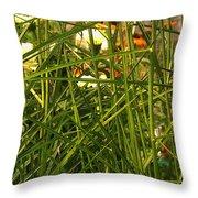 Through The Grass Curtain Throw Pillow