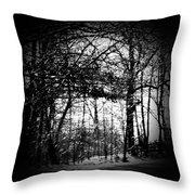 Through The Lens- Black And White Throw Pillow