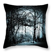 Through The Lens-blue Throw Pillow