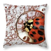 Through The Looking Glass #2 Throw Pillow