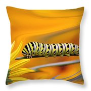 Through The Looking Glass... Throw Pillow