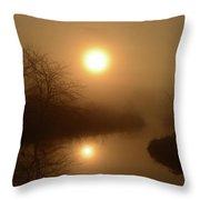 Through The Murky Mist Throw Pillow