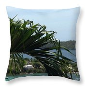 Through The Palms Throw Pillow
