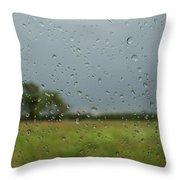 Through The Raindrops Throw Pillow