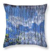 Through The Reeds Throw Pillow