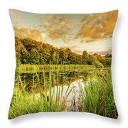 Through The Reeds Throw Pillow by Nick Bywater