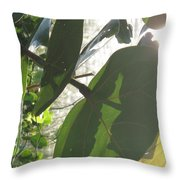 Through The Sea Grape Leaves Throw Pillow