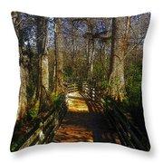 Through The Swamp Throw Pillow