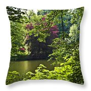 Through The Tree01 Throw Pillow