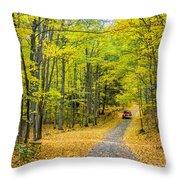 Through Yellow Woods 2 Throw Pillow
