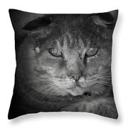 Thumbody In Black And White Throw Pillow