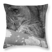 Thumbody Sleeping Throw Pillow