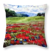 Thunder Clouds Over Bavarian Meadow Throw Pillow