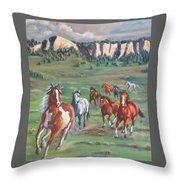 Thunder On The Pine Ridge Throw Pillow