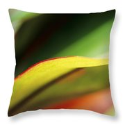 Ti-leaf Abstract Throw Pillow