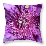 Tickled Purple Throw Pillow