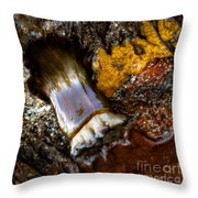Tidal Abstract Throw Pillow