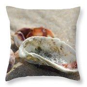 Tidal Deposit Throw Pillow