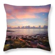 Tidal Pools At Sunrise Throw Pillow
