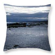 Tidal Secrets Haida Gwaii Bc Throw Pillow