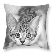 Tiddles Throw Pillow