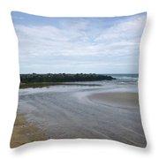 Tide Flats 2 Throw Pillow