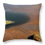 Tide Pool With Coquina Rock Throw Pillow
