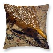Tidepool Kelp Throw Pillow