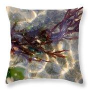Tidepool Seaweed Throw Pillow