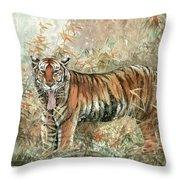 Tiger - 28 Throw Pillow