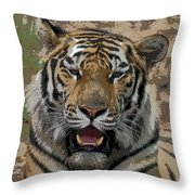 Tiger Abstract Throw Pillow