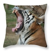 Tiger After Lunch Throw Pillow