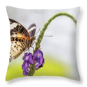 Tiger Butterfly Perched On A Flower Throw Pillow
