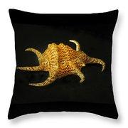 Tiger Conch Seashell Throw Pillow