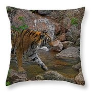 Tiger Crossing Poster Throw Pillow