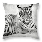 Tiger Cub At Rest Throw Pillow