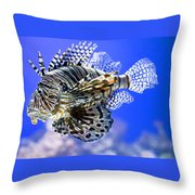 Tiger Fish Throw Pillow